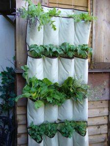 DIY Garden Ideas - Vertical Garden Shoe Rack