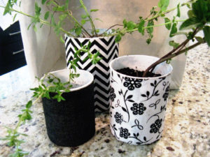 upcycled containers for planters