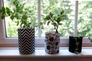 Unusual planter ideas