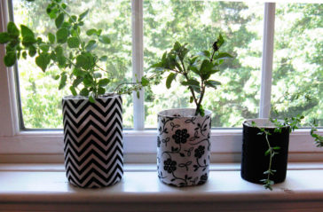 Recycled Garden Ideas – DIY Herb Planter