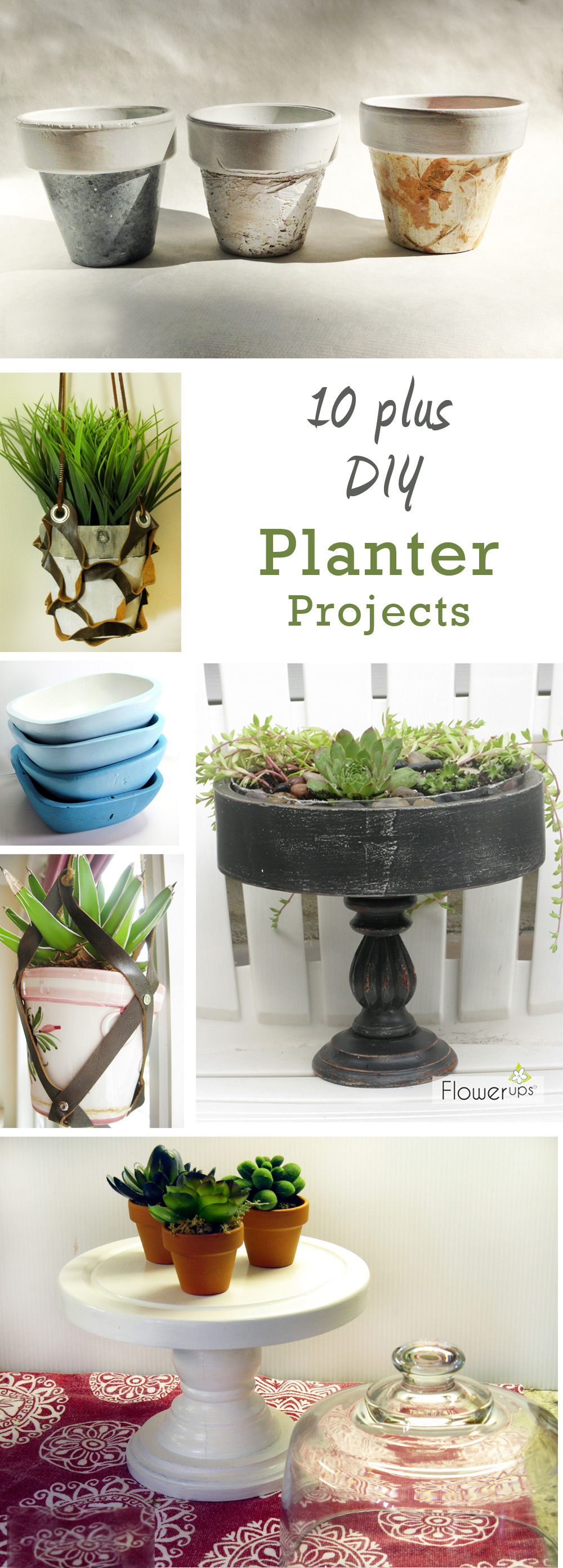 10 + DIY Indoor Gardening Projects