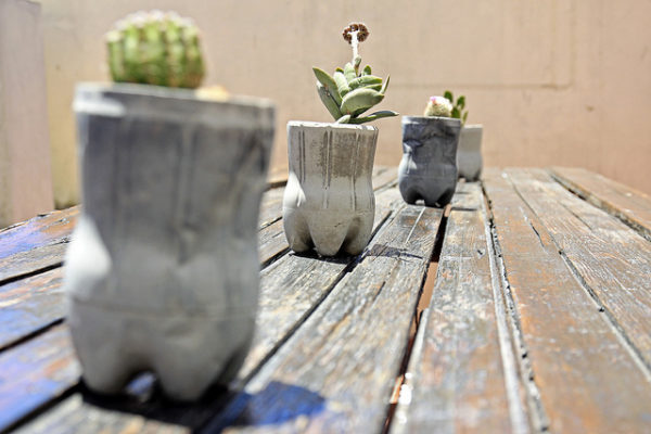 Soda bottle planter - cactus