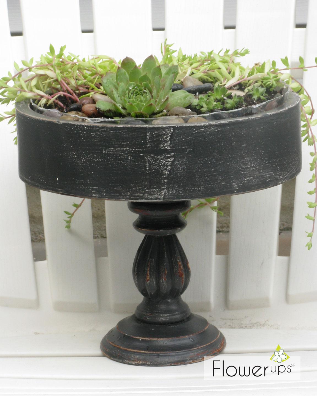 Flea market succulent planter