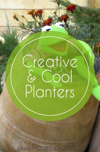 cool garden planters