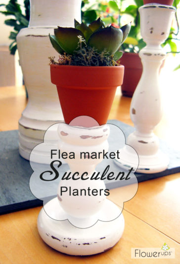 DIY Flea Market Planter – Succulent Display