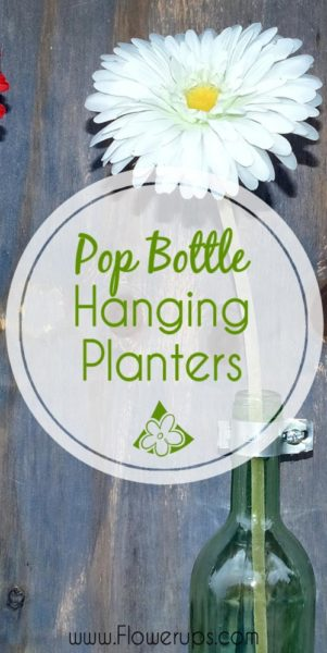 DIY Pop Bottle hanging planters recycle