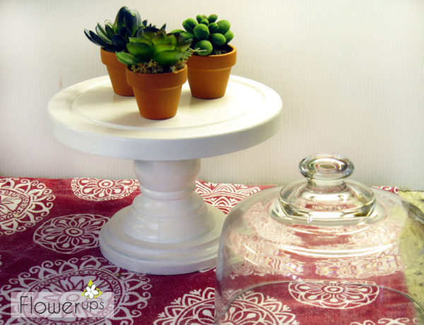 flea market gardening - succulent terrarium