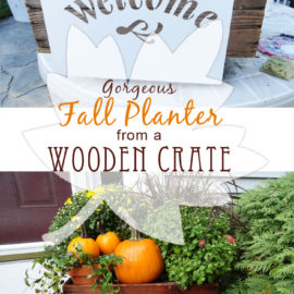 Creative Gardens – Fall Self-Watering Planter