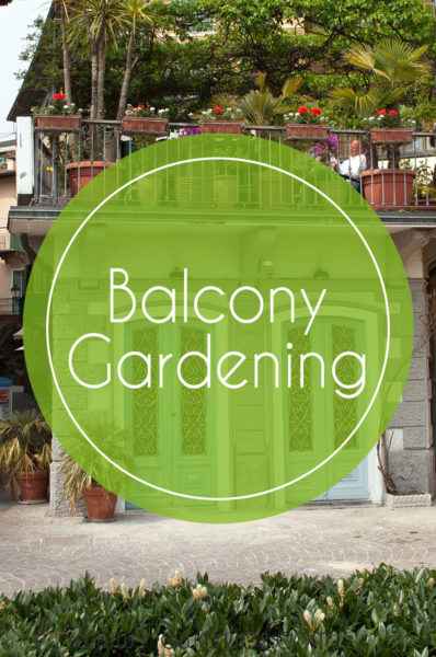 balcony gardening small space living