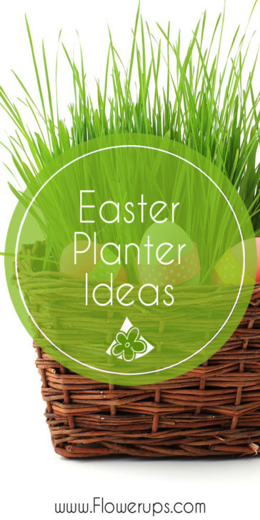 Easter Spring planters for porch decor, container gardens