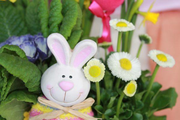 Easter Spring planter bunny