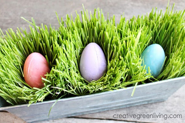 Easter Grass planter